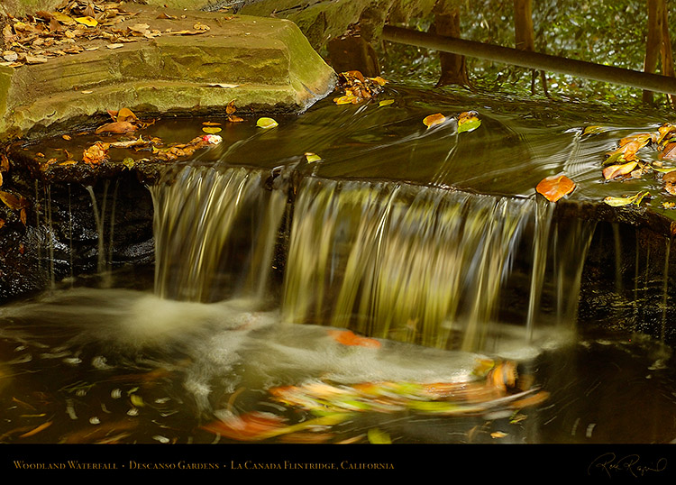 WoodlandWaterfall_2445