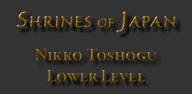 Nikko_LowerLevel