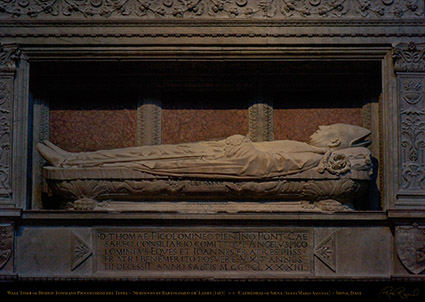 Wall_Tomb_Tommaso_Piccolomini_6310