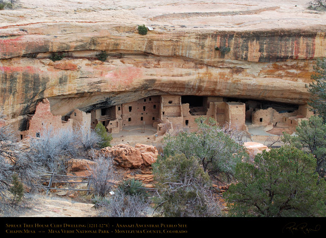 Mesa_Verde_Spruce_Tree_House_X9691