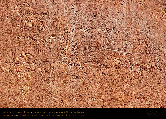 Fremont_Anthropomorphs_Sheep_Capitol_Reef_1481