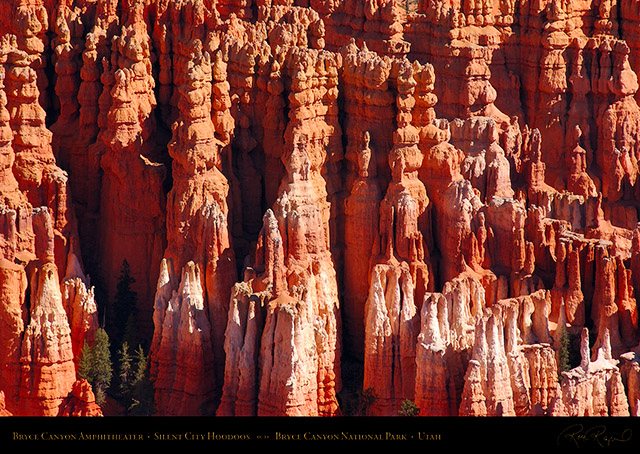 Bryce_Canyon_Amphitheater_Silent_City_Hoodoos_0679