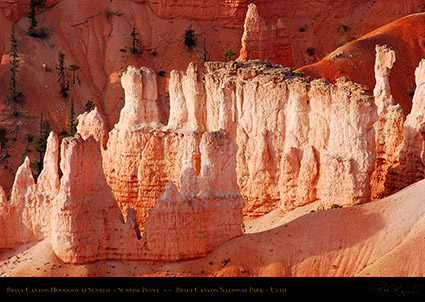 Bryce_Canyon_Hoodoos_Sunrise_Point_1793