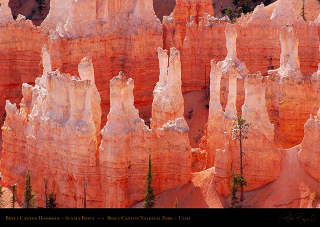 Bryce_Canyon_Hoodoos_Sunset_Point_1981