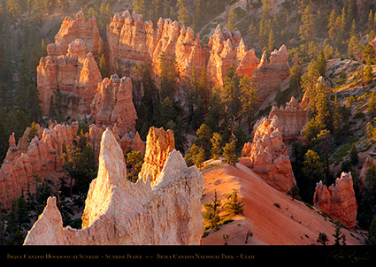 Bryce_Canyon_Hoodoos_at_Sunrise_Point_0477