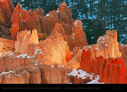 Bryce_Canyon_Hoodoos_at_Sunrise_in_Winter_5498
