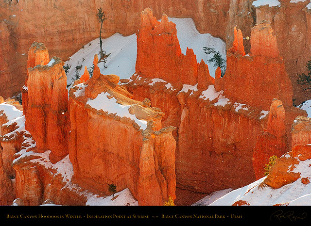 Bryce_Canyon_Hoodoos_at_Sunrise_in_Winter_5519