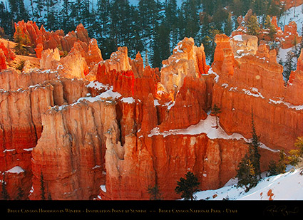 Bryce_Canyon_Hoodoos_at_Sunrise_in_Winter_5520
