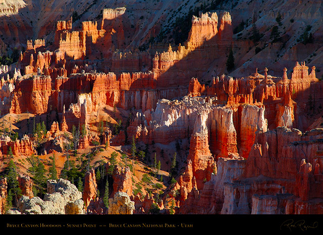 Bryce_Canyon_Hoodoos_Sunset_Point_X1882