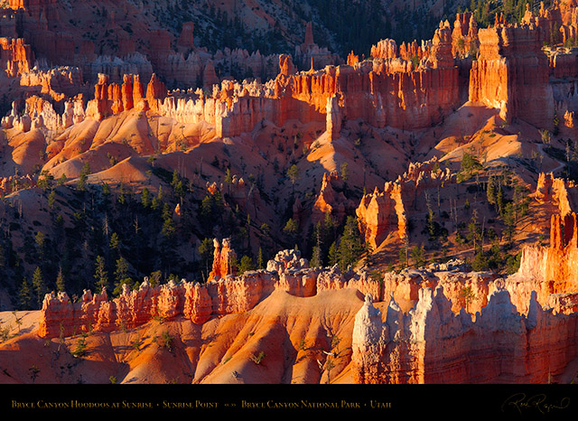 Bryce_Canyon_Hoodoos_at_Sunrise_X1955