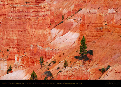Bryce_Canyon_Landscape_Sunset_Point_at_Sunset_6523