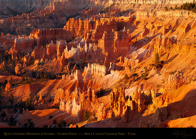 Bryce_Canyon_Queens_Garden_Hoodoos_at_Sunrise_0479