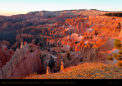 Bryce_Canyon_Sunrise_Point_at_Sunrise_0461