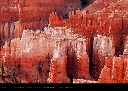 Bryce_Canyon_Hoodoos_Sunset_Point_1954