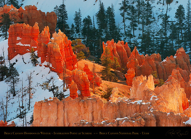 Bryce_Canyon_Hoodoos_at_Sunrise_in_Winter_5511