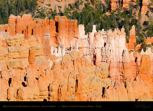Bryce_Canyon_Hoodoos_Sunset_Point_X1871