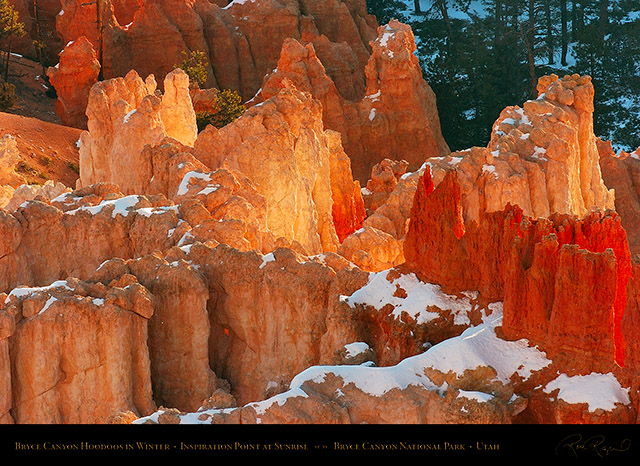 Bryce_Canyon_Hoodoos_at_Sunrise_in_Winter_5497