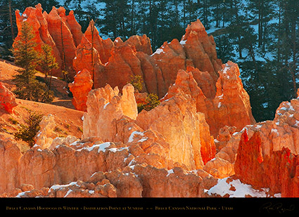 Bryce_Canyon_Hoodoos_at_Sunrise_in_Winter_5512