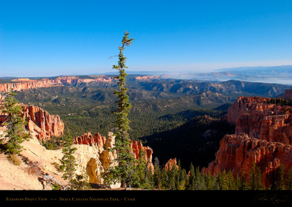 Bryce_Canyon_Rainbow_Point_View_0529