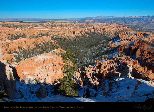 Bryce_Canyon_Rim_View_in_Winter_5289