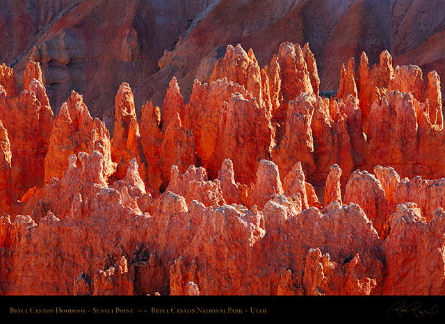 Bryce_Canyon_Hoodoos_Sunset_Point_X1877