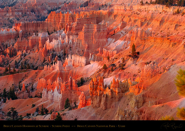 Bryce_Canyon_Hoodoos_at_Sunrise_Point_0459