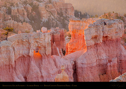 Bryce_Canyon_Iridescent_Fin_at_Sunrise_0468