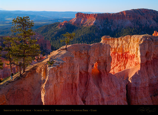 Bryce_Canyon_Iridescent_Fin_at_Sunrise_X1964