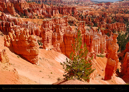 Bryce_Canyon_Landscape_Sunset_Point_1942