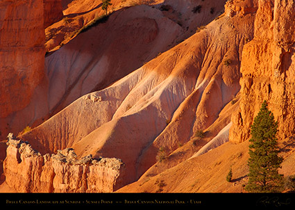 Bryce_Canyon_Landscape_Sunset_Point_at_Sunrise_0500