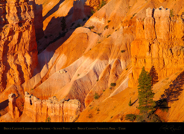 Bryce_Canyon_Landscape_Sunset_Point_at_Sunrise_X1943