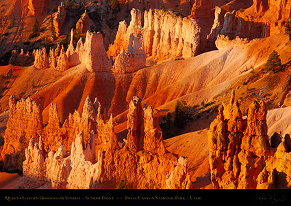 Bryce_Canyon_Queens_Garden_Hoodoos_at_Sunrise_0478