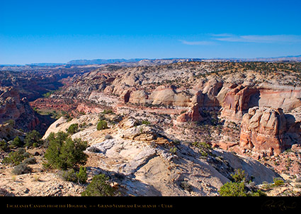 Escalante_Canyon_Hogback_Grand_Staircase_0827
