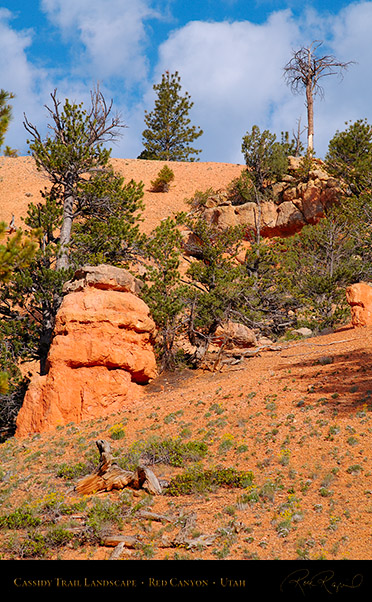 Red_Canyon_Cassidy_Trail_Landscape_X2176