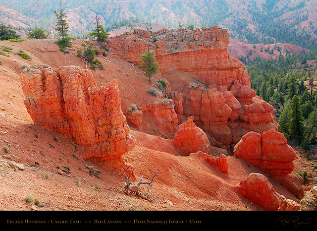 Red_Canyon_Fin_Hoodoos_Cassidy_Trail_X2216