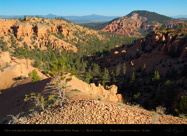 Red_Canyon_Golden_Wall_Trail_X5694