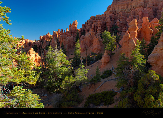 Red_Canyon_Hoodoos_Golden_Wall_Trail_X5711