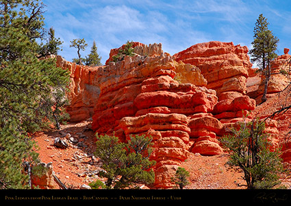 Red_Canyon_Pink_Ledges_2006
