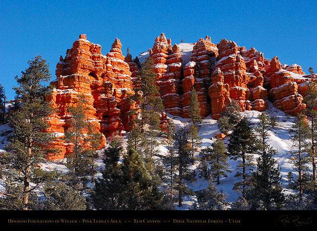 Red_Canyon_Pink_Ledges_Winter_5569