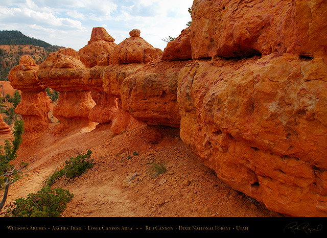 Red_Canyon_Windows_Arches_Trail_X2342