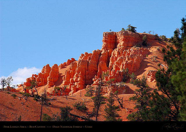 Red_Canyon_Pink_Ledges_1273