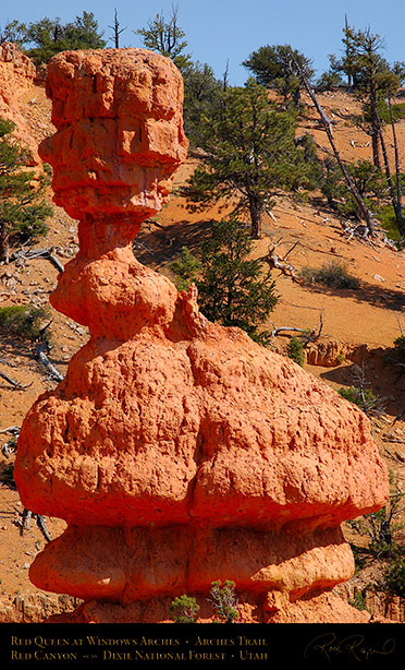 Red_Canyon_Red_Queen_Arches_Trail_0709