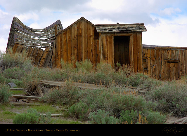 Bodie_LE_Bell_Stable_3263