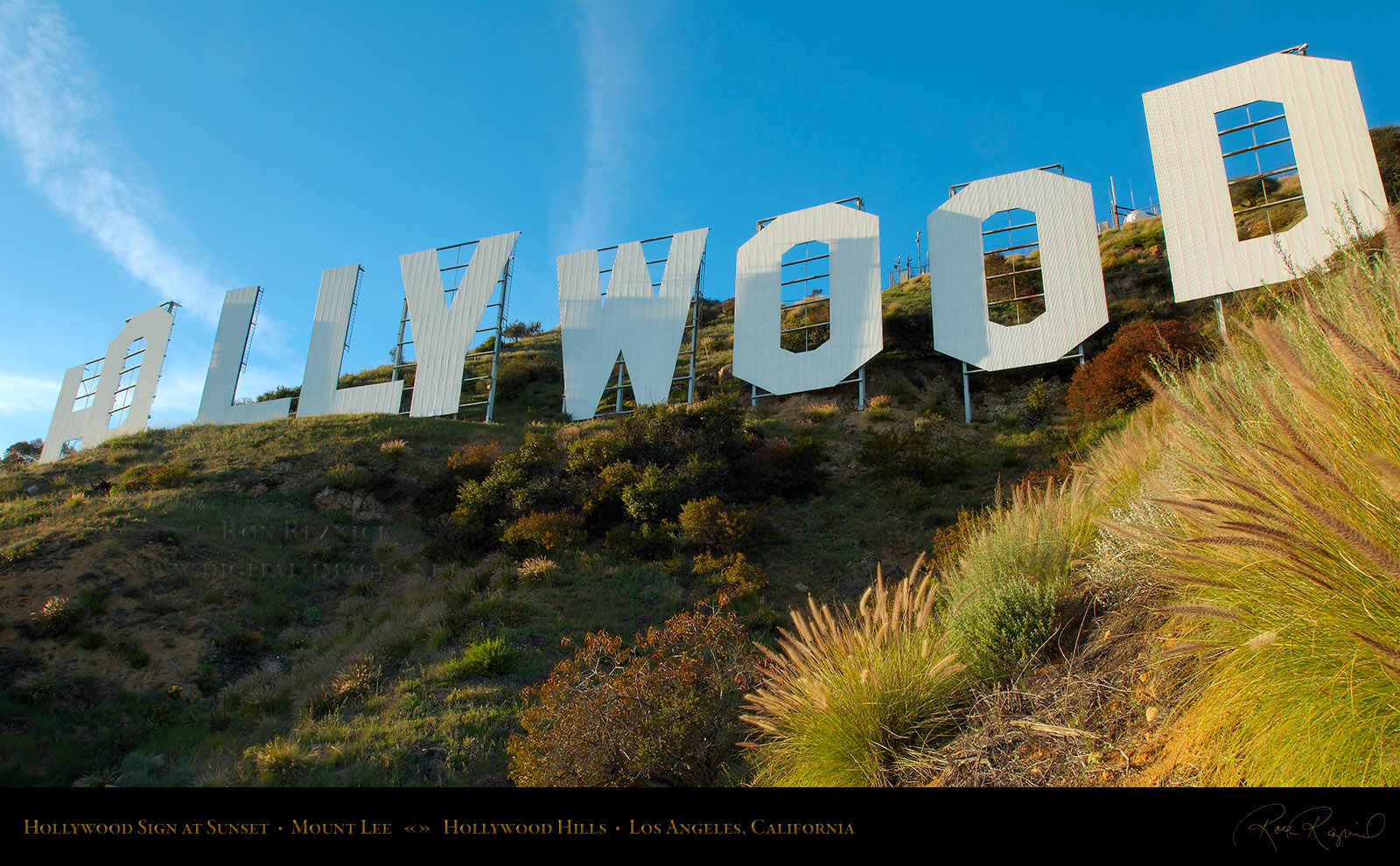 Pictures of hollywood sign Today in Pictures - Zimbio