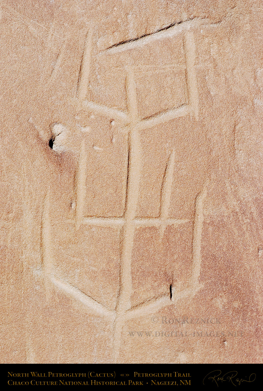 anasazi and fremont petroglyphs compilation